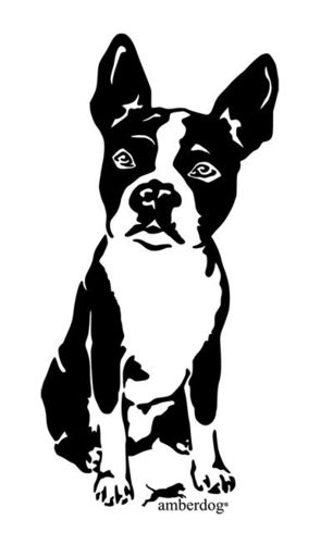 Boston Terrier Grafiklizenz
