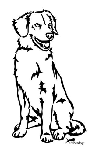 Duck Tolling Retriever Wandtattoo
