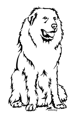 Pyrenean mountain dog wall decal