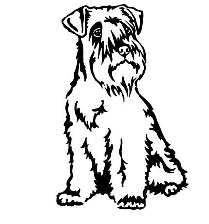 Miniature Schnauzer wall decal
