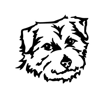 Norfolk Terrier Wandtattoo Kopf
